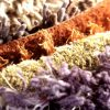 Choosing the right carpeting materials